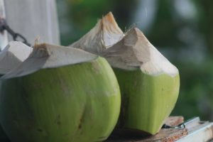 28 Fun And Interesting Facts About Coconuts - Tons Of Facts