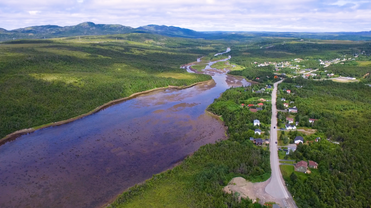 5 Fun And Awesome Facts About Come By Chance, Newfoundland ...